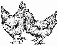 Die fünf Hühnerchen, Пять курочек