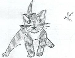 Глупый котёнок / Dummes Kätzchen