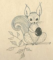 Белка / Eichhörnchen