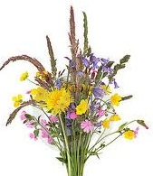 Песнь о цветах / Blumenlied