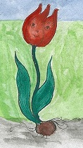 Тюльпан / Die Tulpe