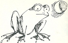 Der Frosch träumt