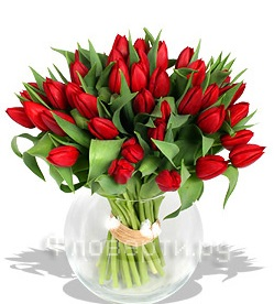тюльпаны на счастье