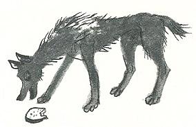 Der arme Hund