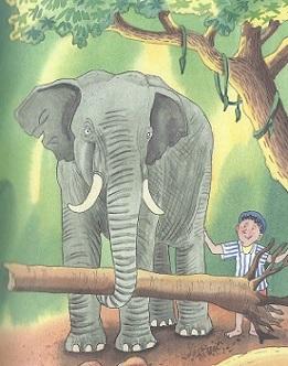 Sithas Elefant
