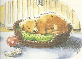 Schlaf gut, Benni!