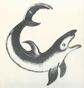 Der Hai und der Delphin