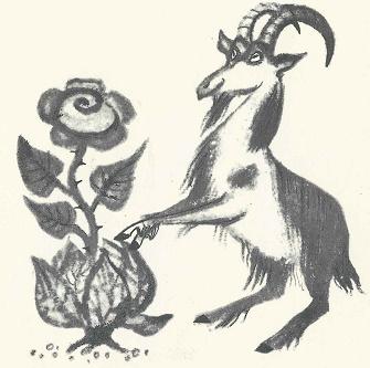 Die blaue Blume und der Ziegenbock