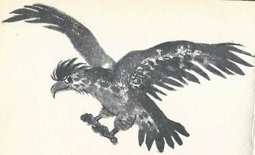 Ich war ein Adler, und ich war es gern